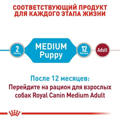 RC-SHN-Wet-MediumPuppy_3-RU.jpg