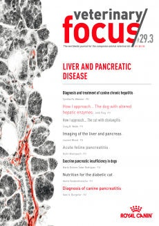 Patologie di fegato e pancreas