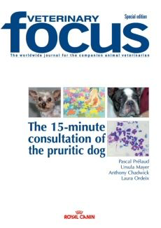 The 15-minute consultation of the pruritic dog