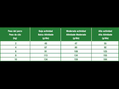 AR-L-Tabla-Racionamiento-Mini-Weight-Care-Size-Health-Nutrition-Seco