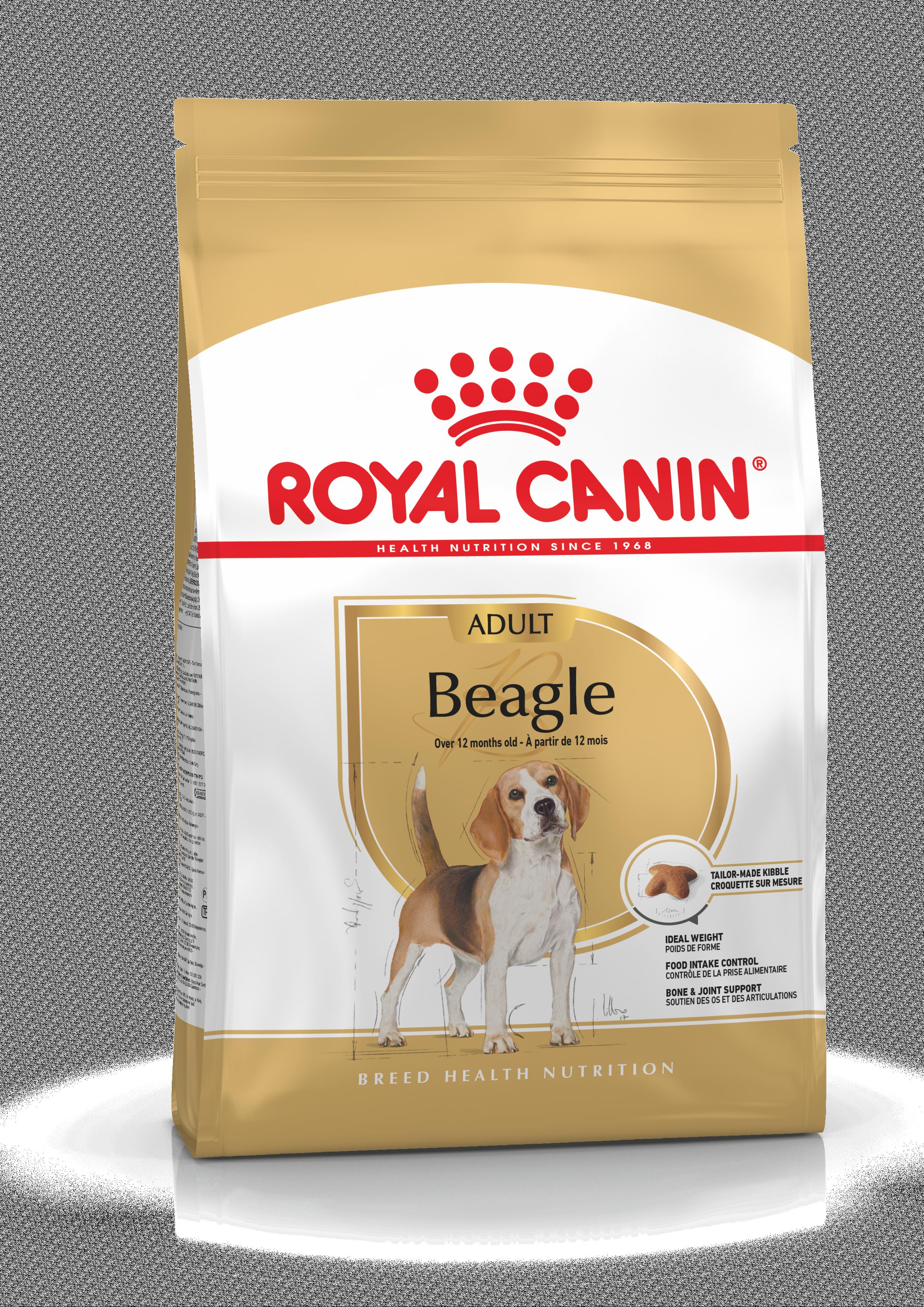 Beagle Adult Kering Royal Canin