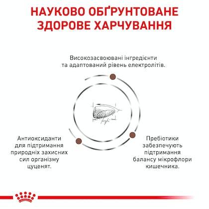 RC-VET-DRY-DogGastroPU-Eretailkit-B1_4-UA