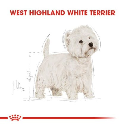 Royal Canin West Highland White Terrier Adult Köpek Maması 1