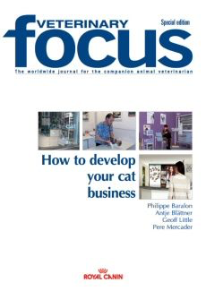 How to develop your cat business
