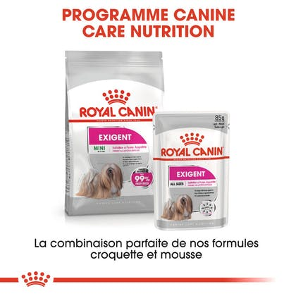 RC-CCN-ExigentMini-CV-Eretailkit-6-fr_FR