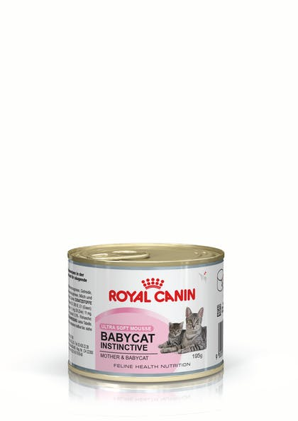 FHN WET 2012 LAUNCH BABYCAT UPDATED 2013 - CAN-BBC-FHNW-PACKSHOT