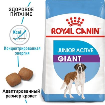 RC-SHN-PuppyGiantJuniorActive_1-RU.jpg