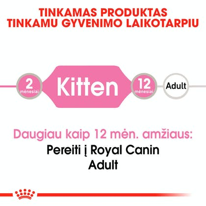RC-FHN-KittenInstinctiveJelly-CV-Eretailkit-1-lt_LT