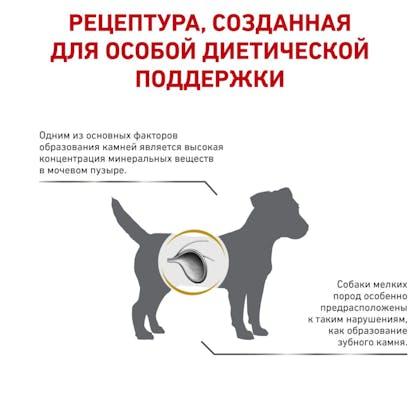 3_RC-VET-DRY-DogUrinarySOSD-rus3