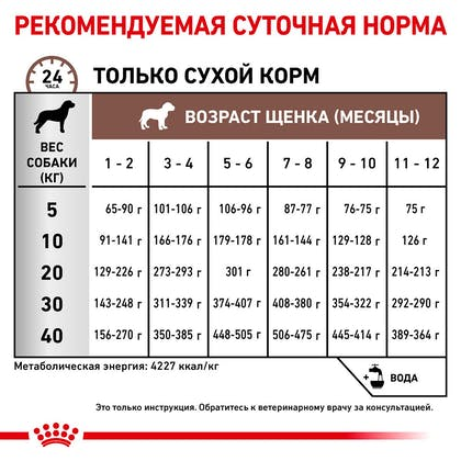 RC-VET-DRY-DogGastroPU-Eretailkit-B1_6-RU