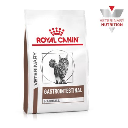 VHN-BrandFlagship-Hero-Images-Gastrointestinal Hairball Cat Dry-B1