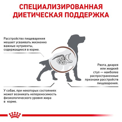 RC-VET-DRY-DogGastroLF-Eretailkit-B1_3-RU