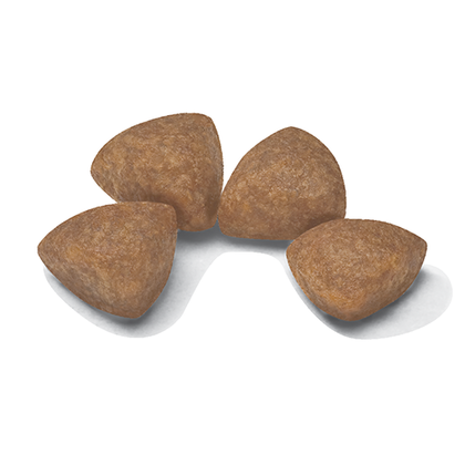 AR-L-Croqueta-X-Small-Puppy-Size-Health-Nutrition-Seco