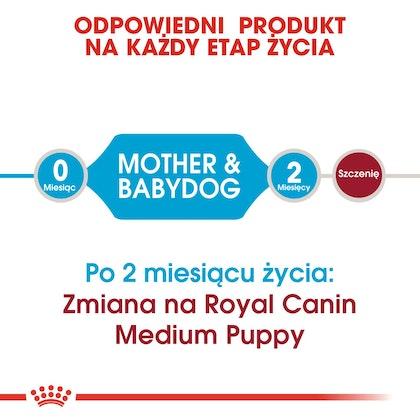 RC-SHN-Puppy-Medium Starter Mother & Babydog-CV1_011_POLAND-POLISH