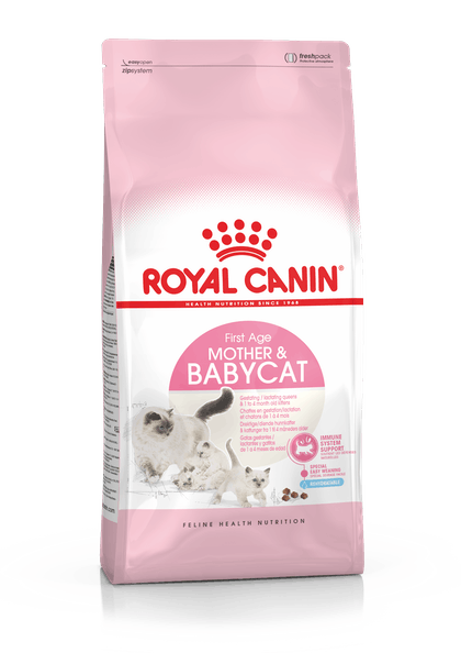 BABYCAT-IN-FHN17-PACKSHOT