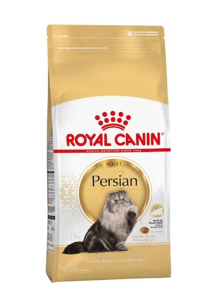 AR-L-Producto-Persian--Feline-Breed-Nutrition-Seco