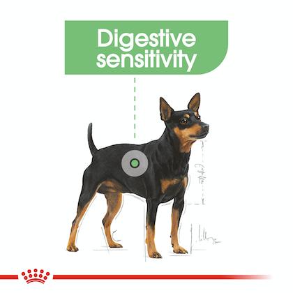 CCN-DigestiveMini-CV-Eretailkit-2