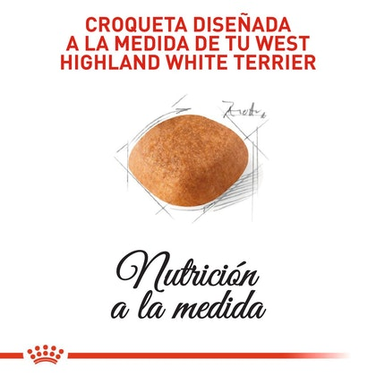 WEST HIGHLANDS ADULT COLOMBIA 3