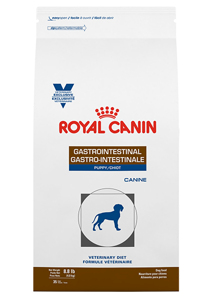 Gastro-Intestinal-Puppy-1