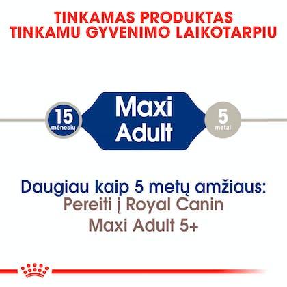 RC-SHN-AdultMaxi-CV-EretailKit-1-lt_LT