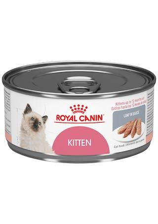 Kitten Loaf in Sauce lata