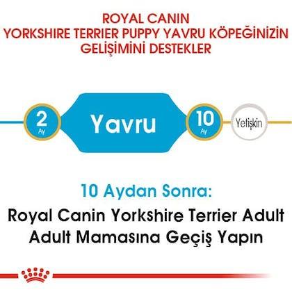 Royal Canin Yorkshire Terrier Puppy Yavru Köpek Maması 4