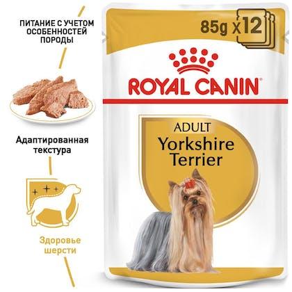 RC-BHN-Wet-Yorkshire_1-RU.jpg