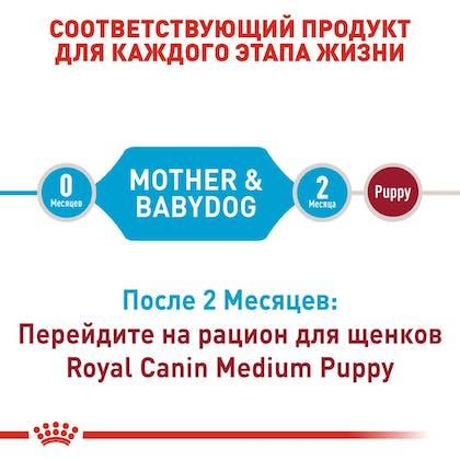RC-SHN-PuppyMediumStarter_2-RU.jpg
