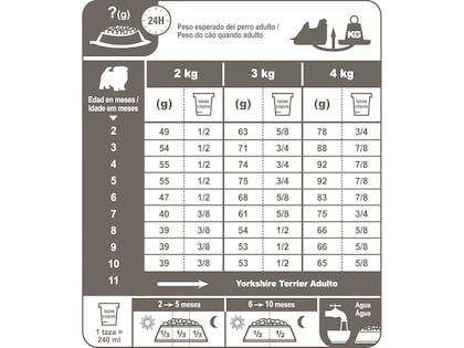 AR-L-Tabla-Racionamiento-Yorkshire-Terrier-Junior-Breed-Health-Nutrition-Seco