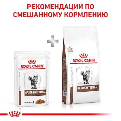 RC-VET-WET-CatGastroMIG-Eretailkit-B1_8-RU