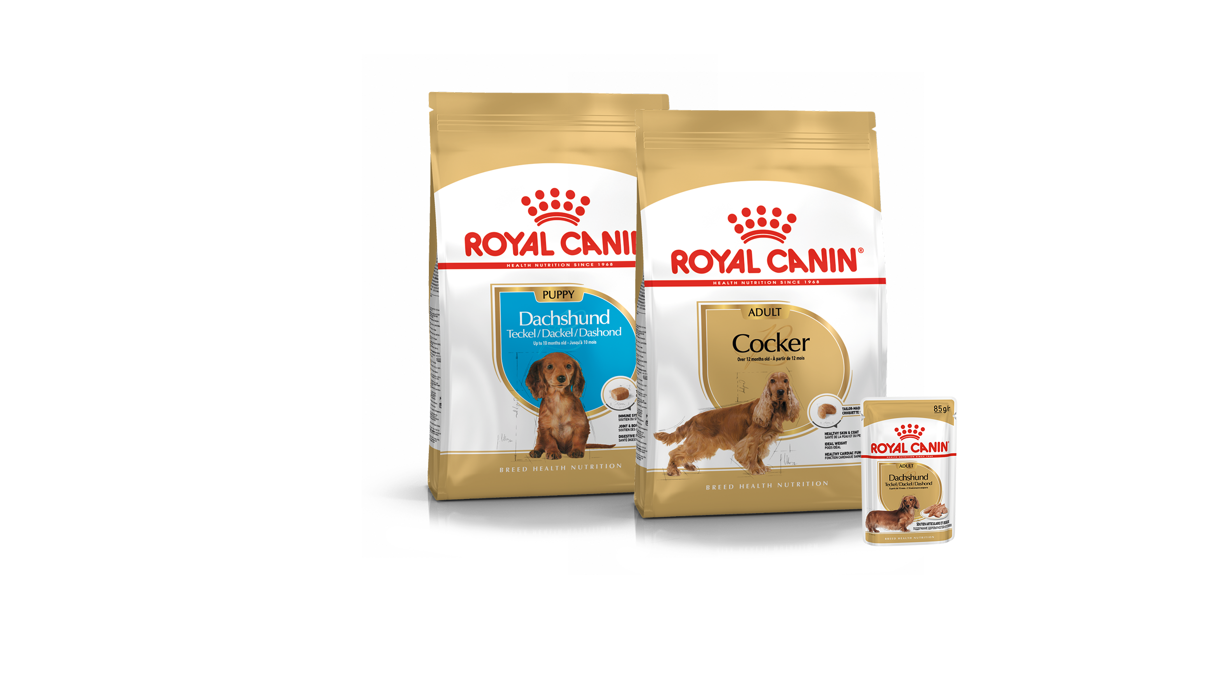 Dog & Puppy Food - Royal Canin