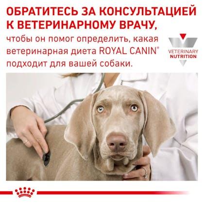 RC-VET-WET-DogGastroHEP420g-Eretailkit-B1_7-RU