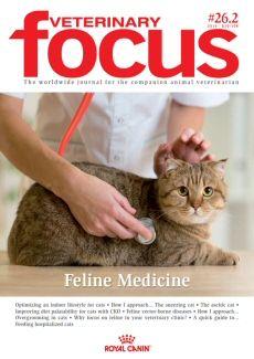 Issue 26.2 Feline Medicine
