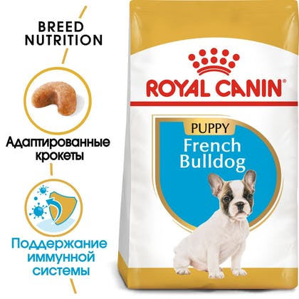 French Bulldog Puppy hero