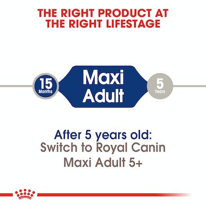 SHN-AdultMaxi-CV-EretailKit-1