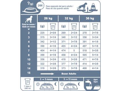 AR-L-Tabla-Racionamiento-Boxer-Junior-Breed-Health-Nutrition-Seco