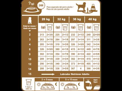 AR-L-Tabla-Racionamiento-Labrador-Retriever-Junior-Breed-Health-Nutrition-Seco