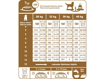 AR-L-Tabla-Racionamiento-Labrador-Retriever-Junior-Breed-Health-Nutrition-Seco