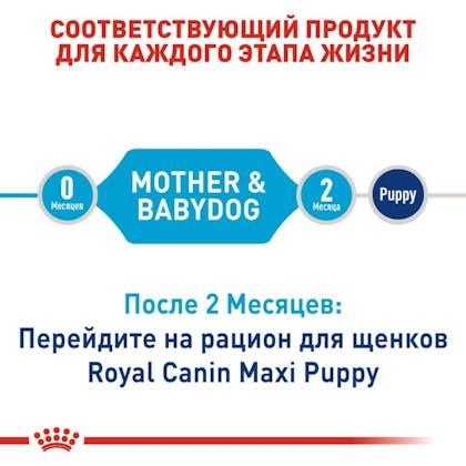 RC-SHN-PuppyMaxiStarter_2-RU.jpg