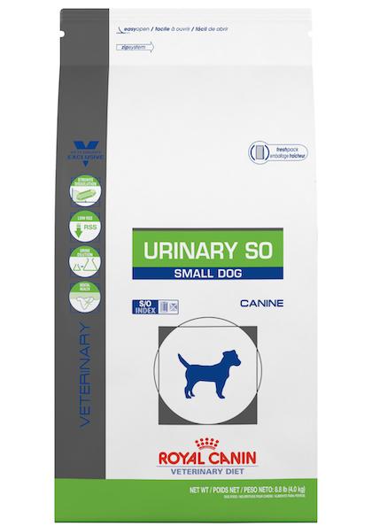 Urinary_Small_Dog_1