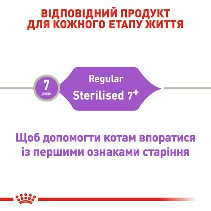 RC-FHN-Sterilised7_2-UA.jpg