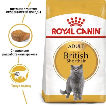 RC-FBN-BritishSH_1-RU.jpg