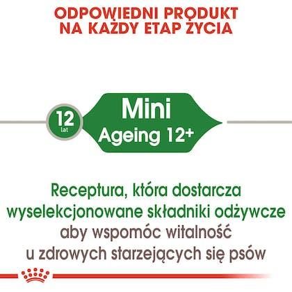 RC-SHN-Wet-MiniAgeing-CV-Eretailkit-1-pl_PL
