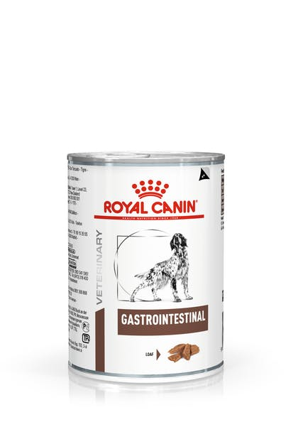 VHN-GASTROINTESTINAL DOG LOAF CAN 400GR-PACKSHOT