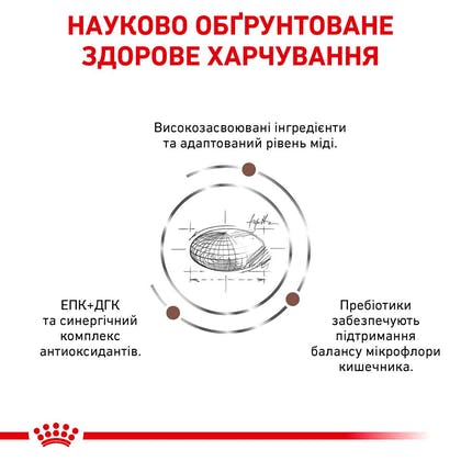 RC-VET-DRY-CatGastroHE-Eretailkit-B1_4-UA