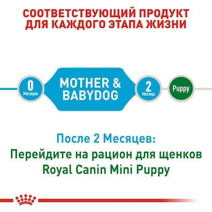 RC-SHN-PuppyMiniStarter_2-RU.jpg