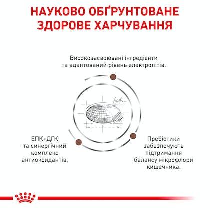 RC-VET-DRY-DogGastro-Eretailkit-B1_4-UA