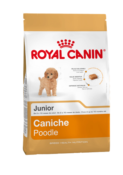AR-L-Producto-Caniche-Junior-Breed-Health-Nutrition-Seco