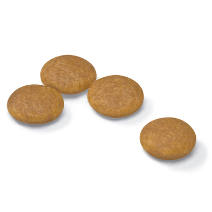AR-L-Croqueta-Mini-Dermacomfort-Size-Health-Nutrition-Seco