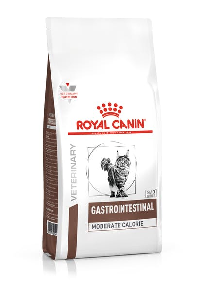 Ειδική τροφή για γάτες για την υποστήριξη της υγιούς πέψης και εντερικής λειτουργίας, σε σακούλα